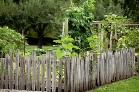 6 inexpensive ideas for garden fencing