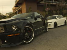 Mustang008