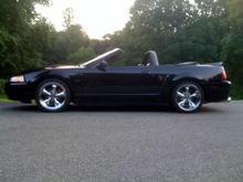 00 Mustang 3