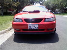 Red Stang 1