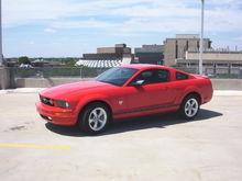QPublik's Mustang