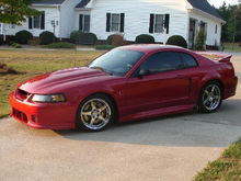 02-03 Roush Stg 3, 00 Cobra R hood.