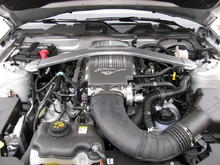 4.6L V8 from my 2010 Mustang GT