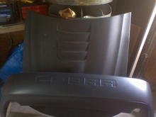 My Hood and New 03-04 Cobra Rear Bumper...