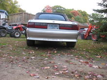 nice rear view