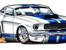 66 Shelby