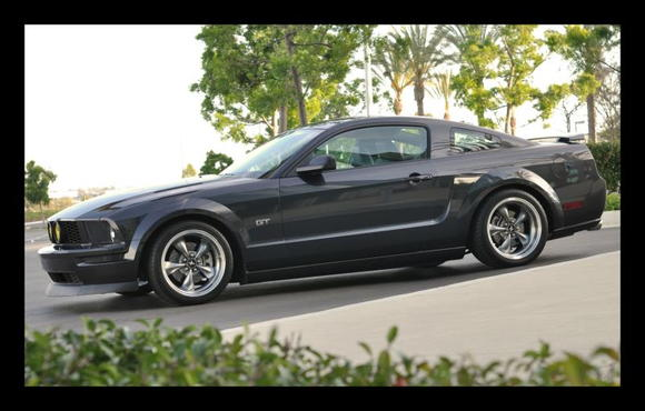 DSC 0334 Mustang DriverSide Low framed 1500pix