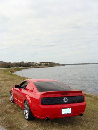 12 08 Mustang 099