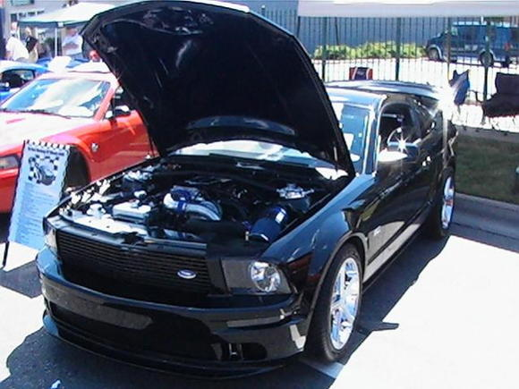 Mustang Alley 2008