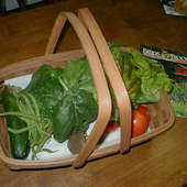 Garden Produce.