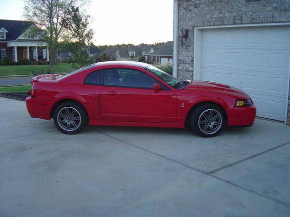 2003 Cobra