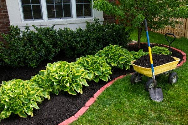 Green Ideas For Mulch Alternatives Doityourself Com
