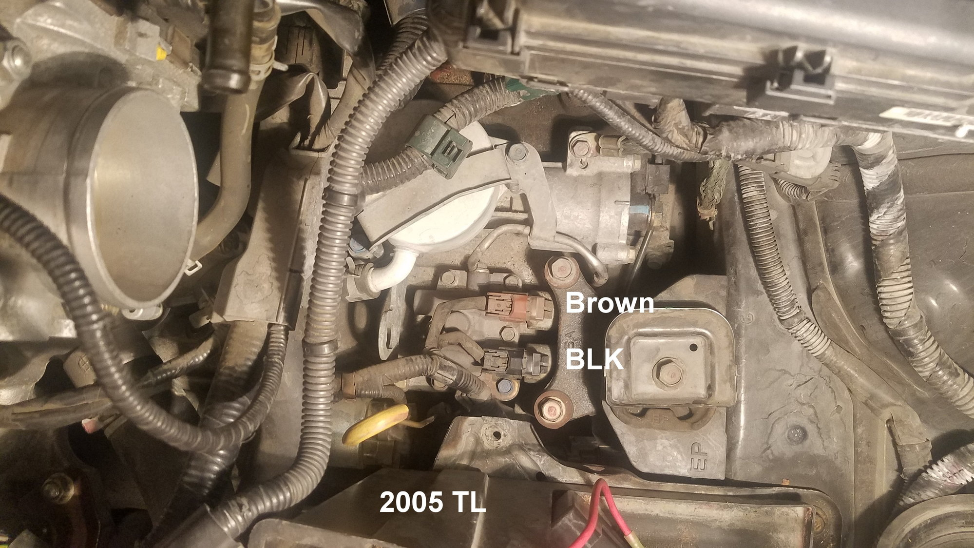 Want to swap an H22/F20B into your 2.x CL? *LOOK HERE FIRST ... H Swap Wiring Harness on