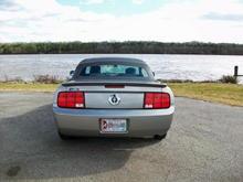 Mustang@River31