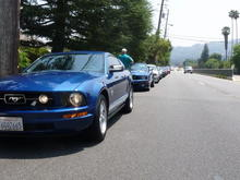 Team Shelby Cruise 2009