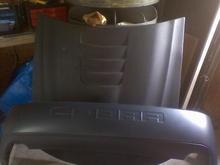 My Hood and New 03-04 Cobra Rear Bumper...