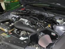 IMG 3684 b