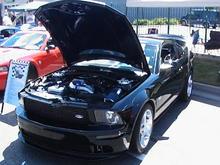 Mustang Alley 2008