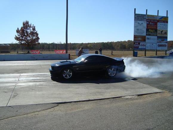 Mustang 224