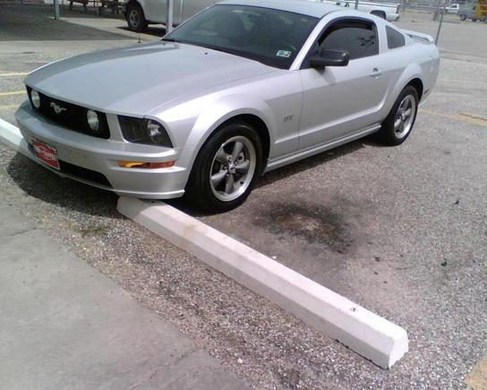 Mustang Pic2