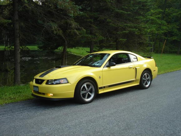 2003 zinc yellow Mach 1
