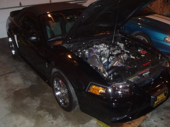 Mustang Garage Engine