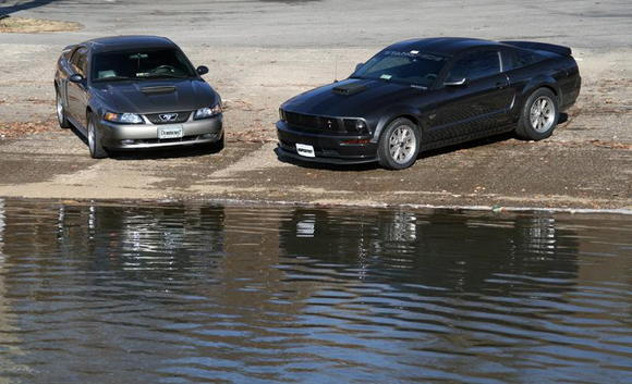 Dominican7 and 5spd07gt by the water.