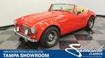 1962 Austin Healey Sebring 5000/MX Replica