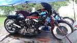 96ci XL/A Nostalgic Harley Gasser
