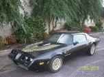 1979 Pontiac Firebird  for sale $24,999