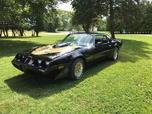 1981 Pontiac Firebird  for sale $13,999