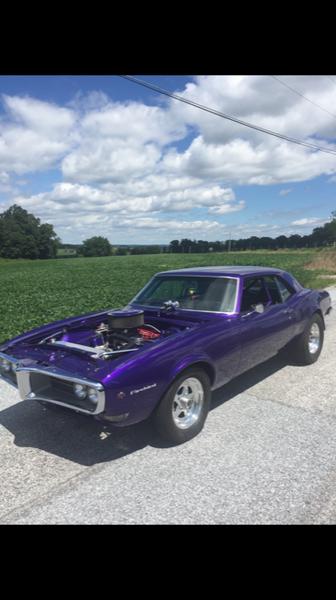 1968 Pontiac Firebird  for Sale $25,000