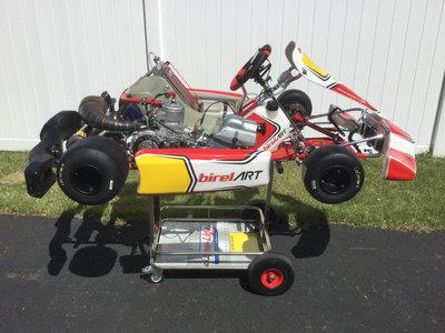 Birel CRY30-S10 with TM KZR1 prepared motor
