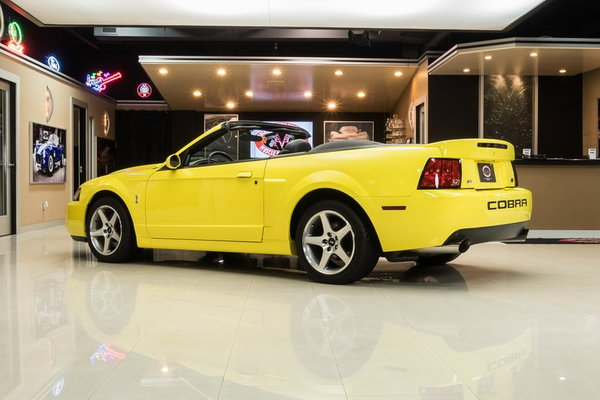 2003 Ford Mustang SVT Cobra Convertible  for Sale $34,900