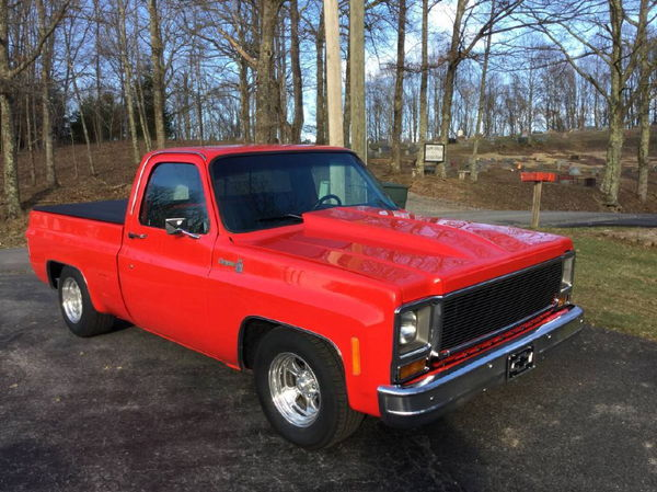 1979 CHEVROLET C-10  for Sale $18,500