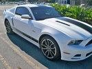 2013 Mustang Gt Prem Build first 950