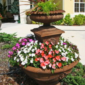 I filled a fountain I had out in the front with soil and made it into a planter!