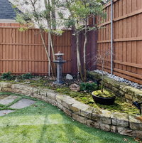 Moss garden with Japanese weeping maple,