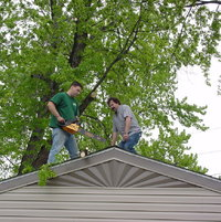 May-2003. Trimming large Maple to allow more Sunlight.