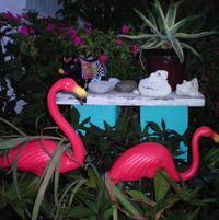 Flamingo sentries at the front door.