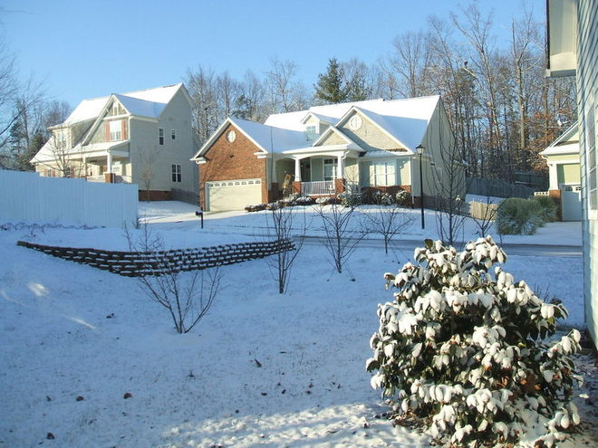 Snow covered camillia serves as foundation plant at rear of house; dormant pear, apple, and peach trees are in background.  Walled vegetable/flower garden sleeps beneath blanket of snow.