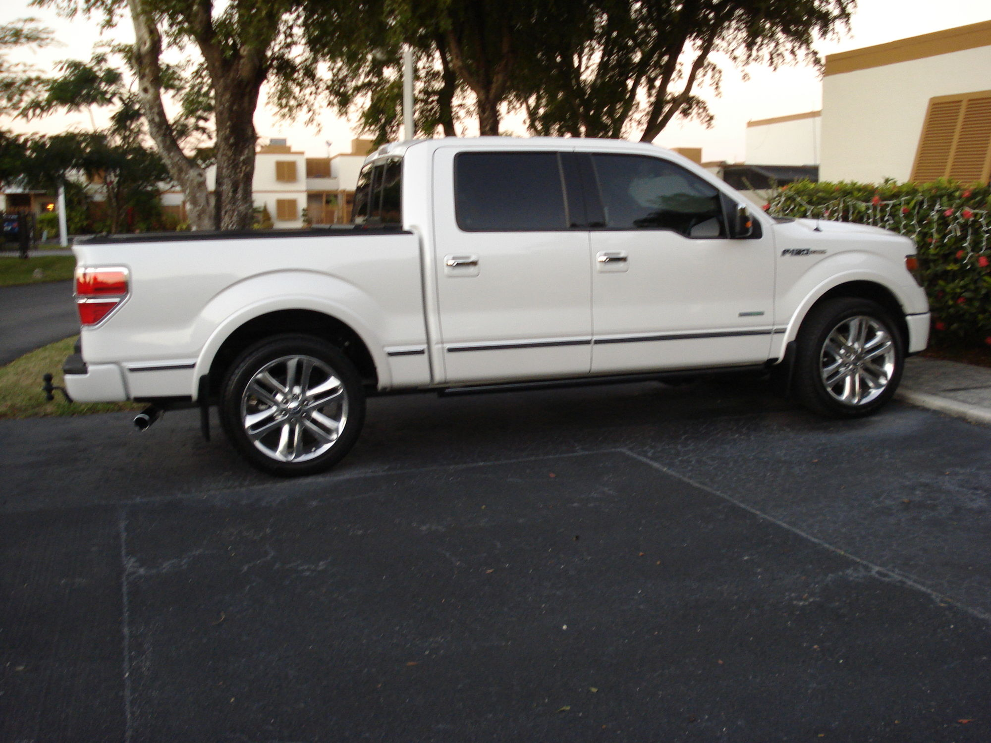 2013-2014 White Platinum with Black or Silver Wheels ...