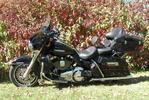 Fall in WI 2012