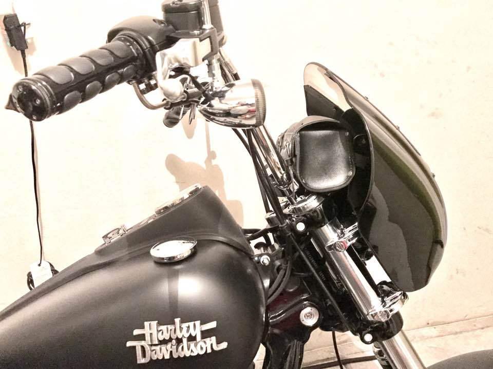 Harley Death Wobble - Harley Davidson Forums