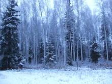 Untitled Album by Alaska-Su - 2011-10-16 00:00:00