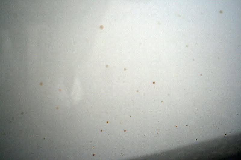Tiny Rust Spots On White Car Paint