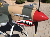 For Sale | Make Offer Giant P-40 Warhawk RTF Top Flite