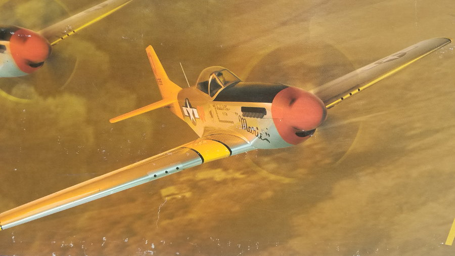 HANGAR 9 1 50 size P-51 ARF with Electric E-Flite Retracts