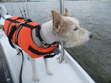 boating security system activated