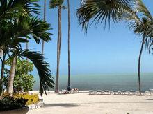 Greetings from Cheeca Lodge Isla morada Florida